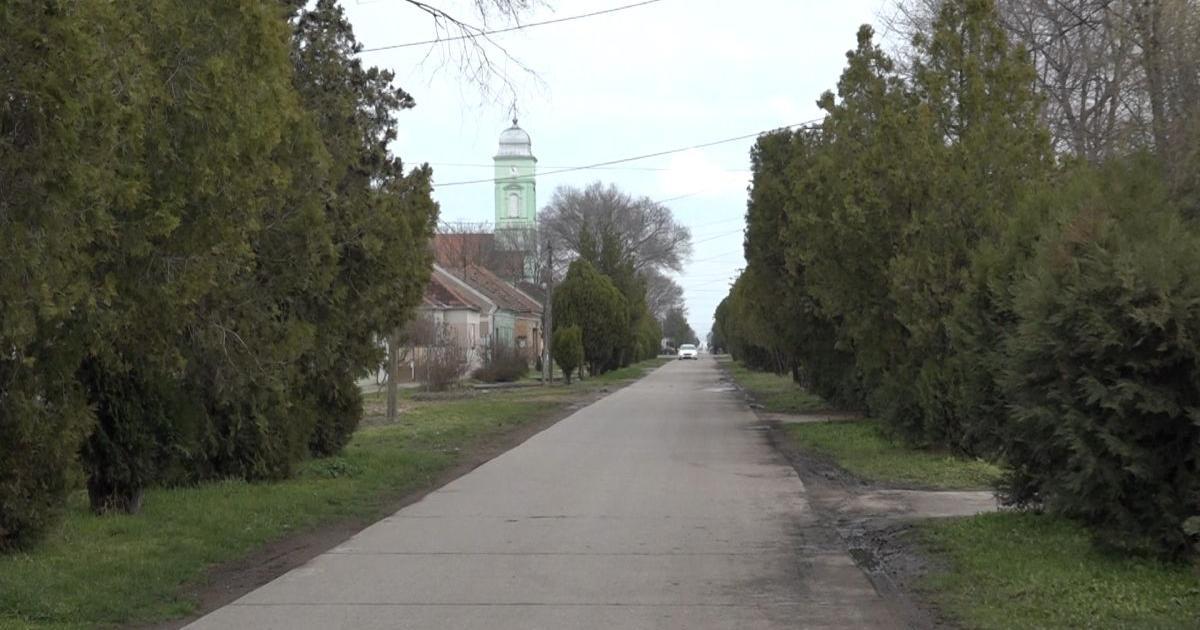 Helyi közösségi választás: Jól szerepeltek a VMSZ jelöltjei Begaszentgyörgy községben