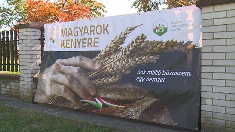 Magyarok kenyere program plakátja