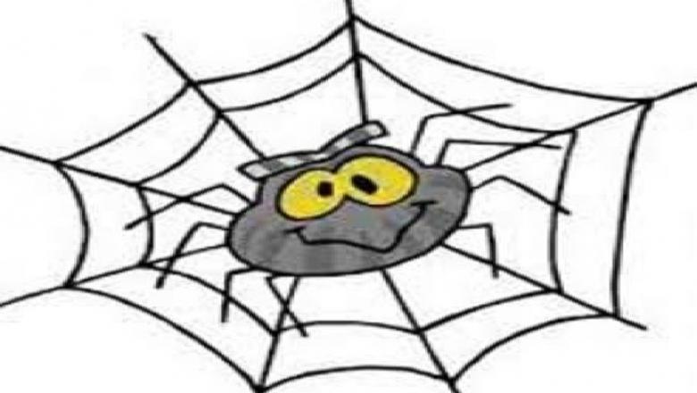 Pók (rajz)