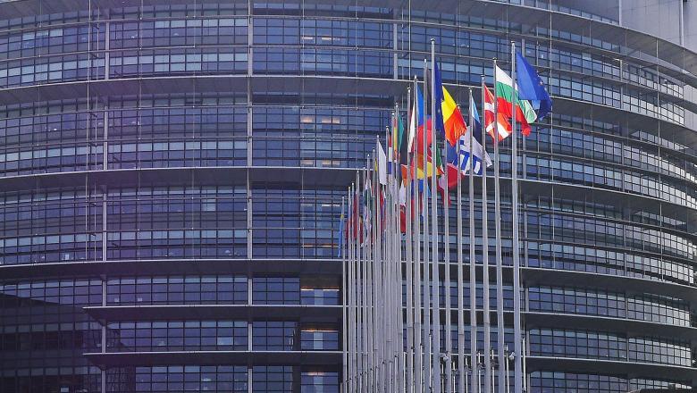 Vita az EP-ben a magyarországi felhatalmazási törvényről